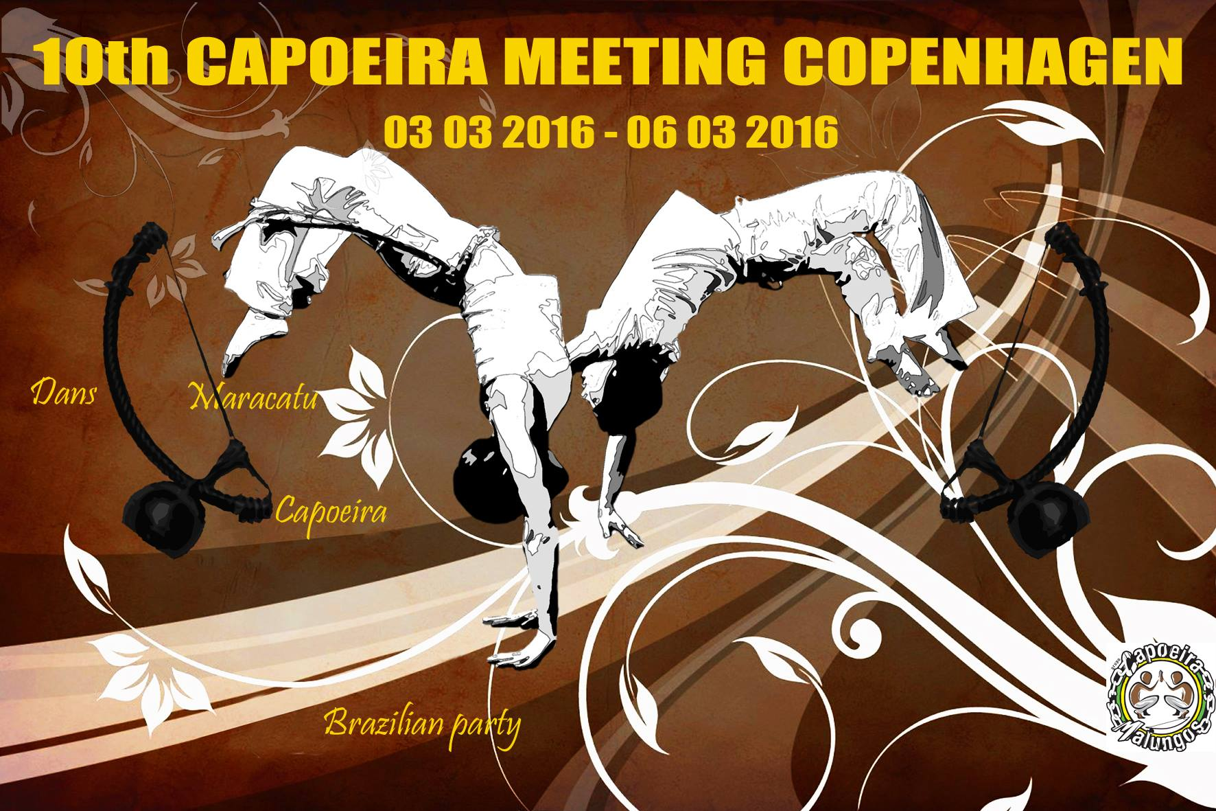 10th capoeira meeting